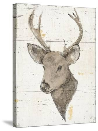 Wild and Beautiful II with Brown-Daphne Brissonnet-Stretched Canvas Print