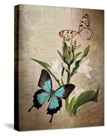 Butterfly Botanical II-Debra Van Swearingen-Stretched Canvas Print