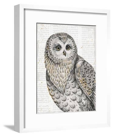Beautiful Owls IV-Daphne Brissonnet-Framed Art Print