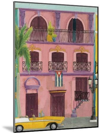 Havana II-Elyse DeNeige-Mounted Art Print