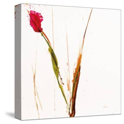 Pink Buds I on White-Jan Griggs-Stretched Canvas Print