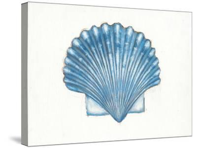 Navy Scallop Shell-Emily Adams-Stretched Canvas Print