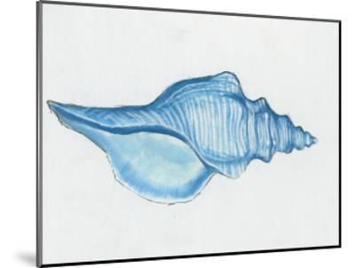 Navy Conch Shell-Emily Adams-Mounted Art Print