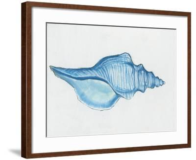 Navy Conch Shell-Emily Adams-Framed Art Print