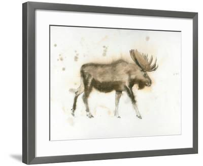 Moose-James Wiens-Framed Art Print