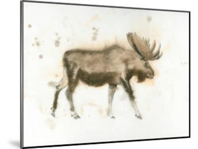 Moose-James Wiens-Mounted Art Print