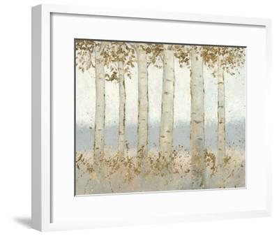 Magnificent Birch Grove-James Wiens-Framed Art Print