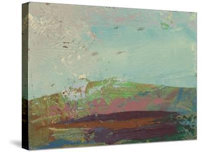 Ceide Study XV-Grainne Dowling-Stretched Canvas Print