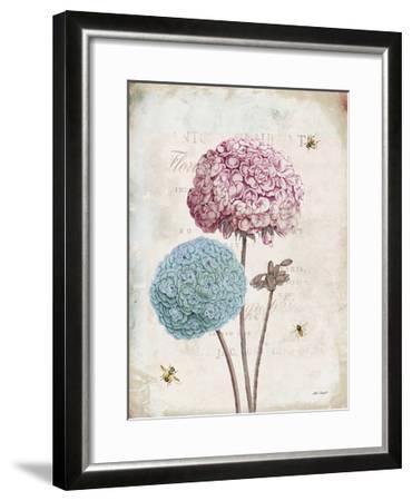 Geranium Study II Pink Flower-Katie Pertiet-Framed Art Print