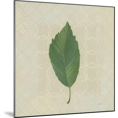 Forest Leaves III no Lines-Kathrine Lovell-Mounted Art Print