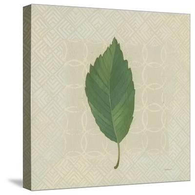 Forest Leaves III no Lines-Kathrine Lovell-Stretched Canvas Print