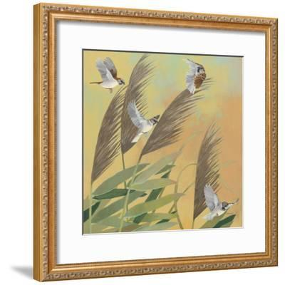 Sparrows and Phragmates Sq-Kathrine Lovell-Framed Art Print