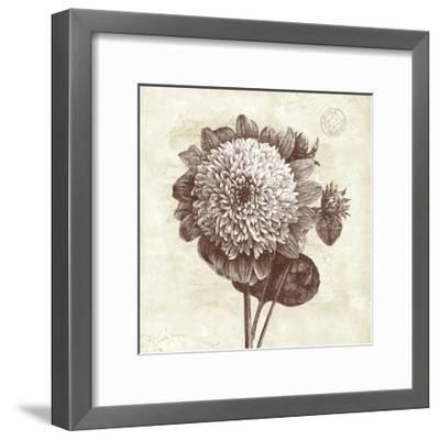 Spa Botanical II-Katie Pertiet-Framed Art Print