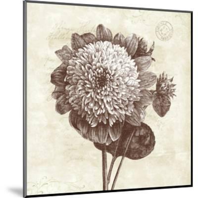 Spa Botanical II-Katie Pertiet-Mounted Art Print