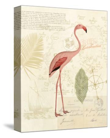 Floridian I-Katie Pertiet-Stretched Canvas Print