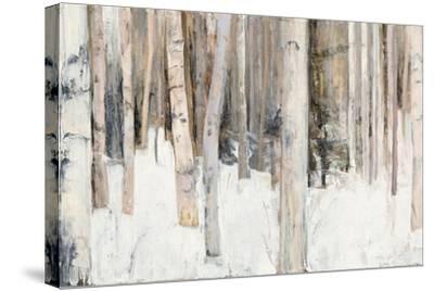 Warm Winter Light III-Julia Purinton-Stretched Canvas Print