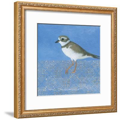 Plover-Kathrine Lovell-Framed Art Print