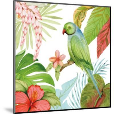 Treasures of the Tropics VII-Kathleen Parr McKenna-Mounted Art Print