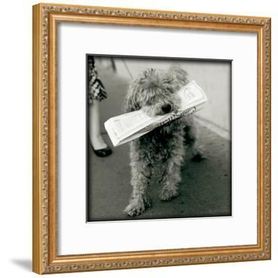 Paris Dog II-Marc Olivier-Framed Art Print