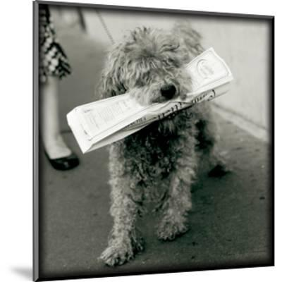 Paris Dog II-Marc Olivier-Mounted Art Print