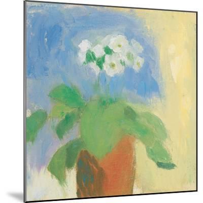 Cream Primula-Michael Clark-Mounted Art Print