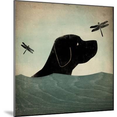 Black Dog Swim-Ryan Fowler-Mounted Art Print