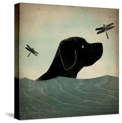 Black Dog Swim-Ryan Fowler-Stretched Canvas Print