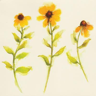 Americana Meadow Element I-Shirley Novak-Framed Art Print