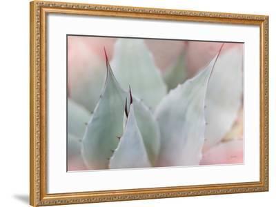 Dream Desert VI-Sue Schlabach-Framed Art Print