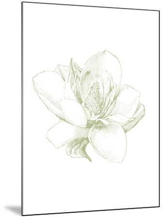 Le Jardin Printemps Pattern I Magnolia-Sue Schlabach-Mounted Art Print