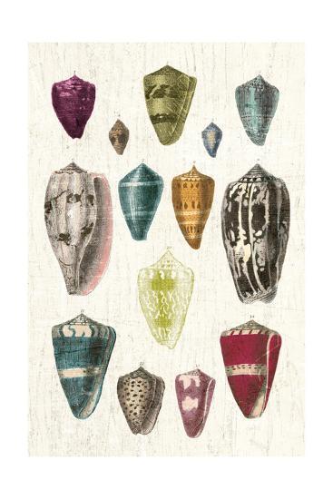 Colorful Shell Assortment I v2-Wild Apple Portfolio-Art Print