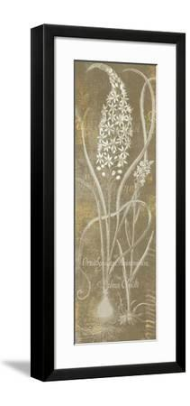 Flower Lines III-Sue Schlabach-Framed Art Print