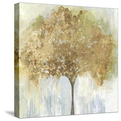 Autumn Tree-Allison Pearce-Stretched Canvas Print