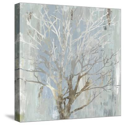 Silver Tree-Allison Pearce-Stretched Canvas Print