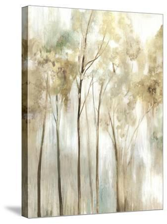 Sapling I-Allison Pearce-Stretched Canvas Print