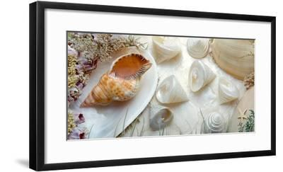 Island Tide Pool No. 6-Alan Blaustein-Framed Photographic Print