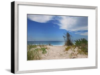 Dune Trail-Brent Anderson-Framed Photographic Print