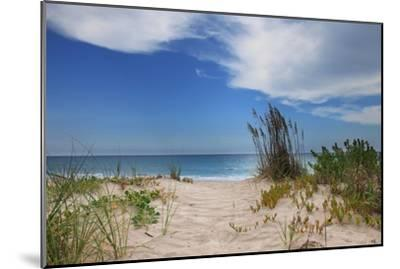 Dune Trail-Brent Anderson-Mounted Photographic Print