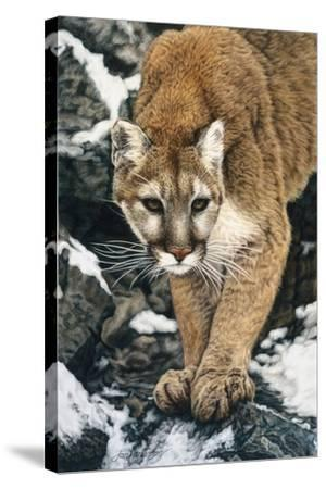 Silent Approach-Jan Henderson-Stretched Canvas Print