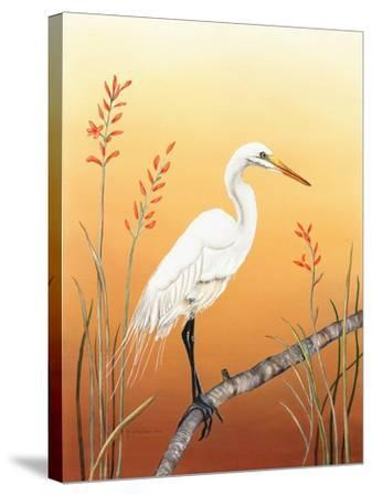 Warm Sky-Christine Reichow-Stretched Canvas Print