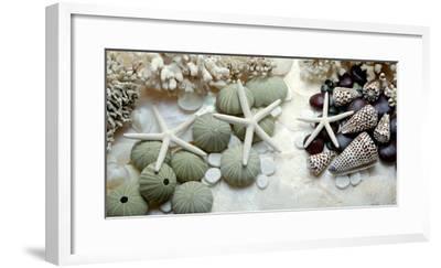 Island Tide Pool No. 2-Alan Blaustein-Framed Photographic Print