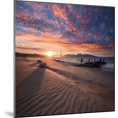 Composed-Dave Gordon-Mounted Photographic Print