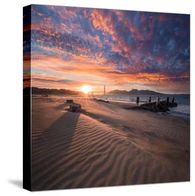 Composed-Dave Gordon-Stretched Canvas Print