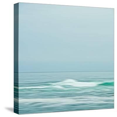 Seacoast 601-David E Rowell-Stretched Canvas Print