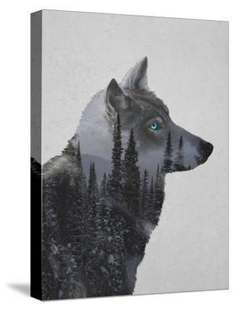 Winter Wolf-Davies Babies-Stretched Canvas Print