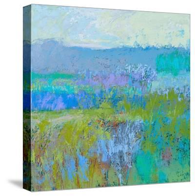 Color Field 41-Jane Schmidt-Stretched Canvas Print