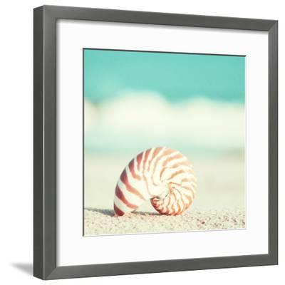 Nautilus-Carolyn Cochrane-Framed Photographic Print