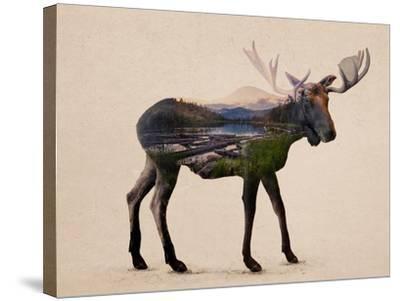 The Alaskan Bull Moose-Davies Babies-Stretched Canvas Print