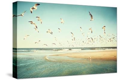 Freedom-Carolyn Cochrane-Stretched Canvas Print