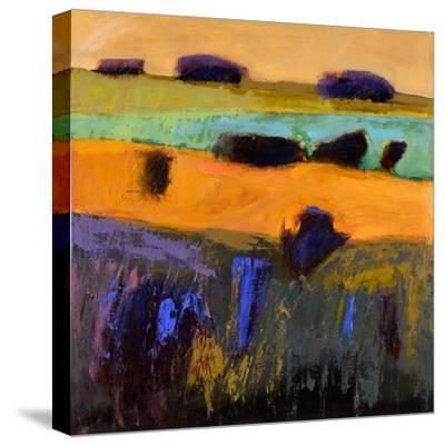 From What I Imagined-Jane Schmidt-Stretched Canvas Print